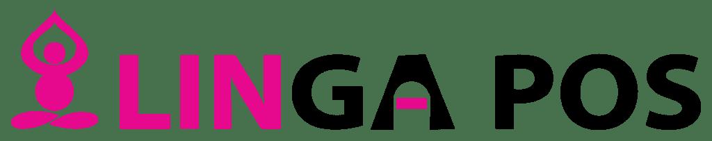 Linga POS Review